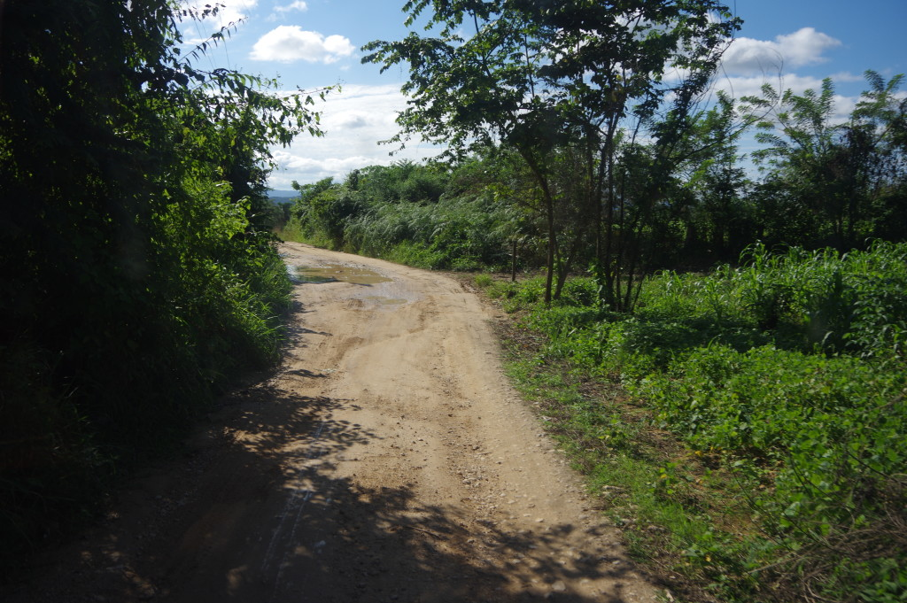 Dirt road towards Flores