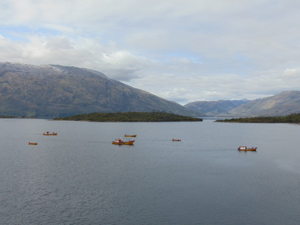 Lots of little boats at the intermediate stop in Puerto Edén