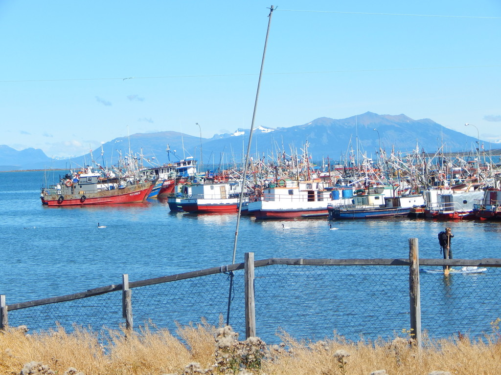 Docks of Puerto Natales (Photo: Jeff Perry)